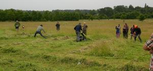 Cambridgeshire 2015 Scything 165