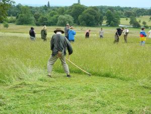 Wimpole Hall National Trust Cambridgeshire Scything 2015 217